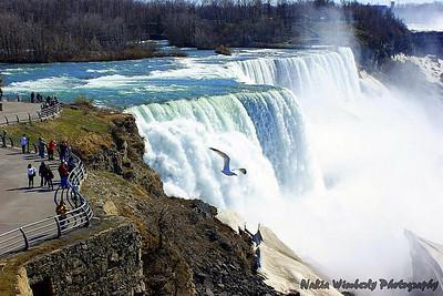 Niagara Falls '09