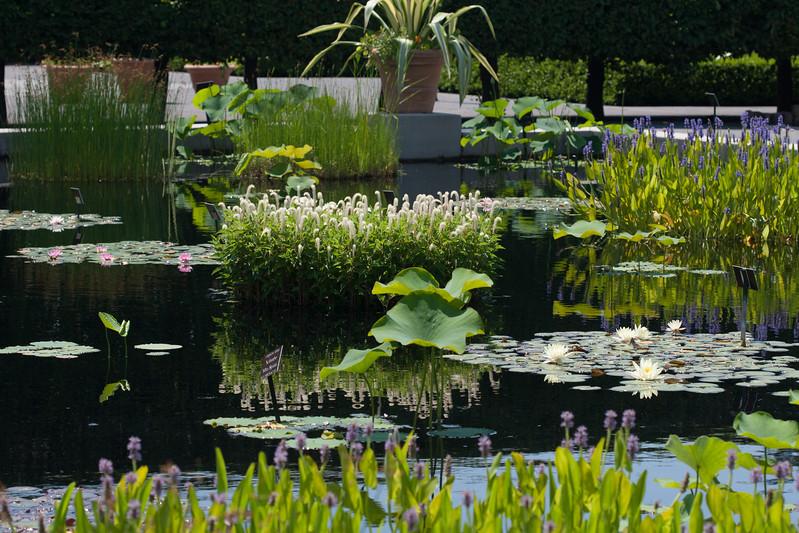 2009 06 30_NY Botanical Gardens_0723.jpg