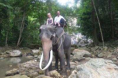 2011 Thailand (Koh Samui Elephant Treking)