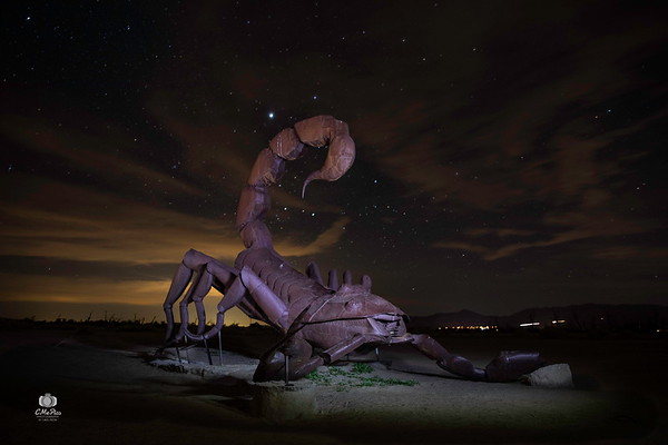Anza Borrego Night Outing