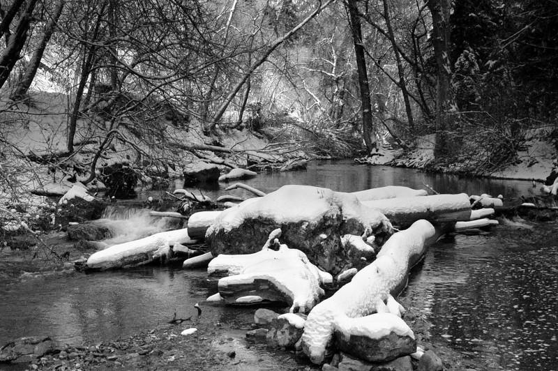 B&W river.jpg