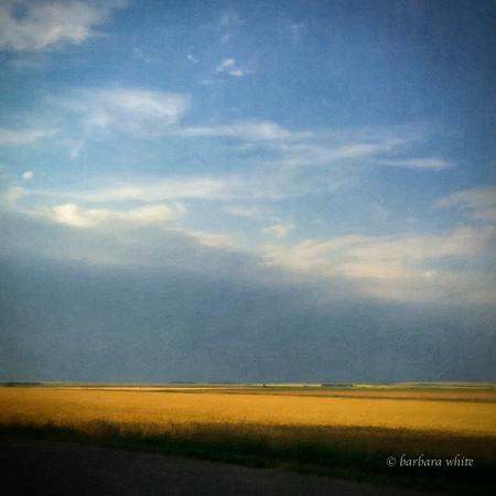 Photo Art Rendering