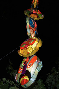Lantern Festival - 2007