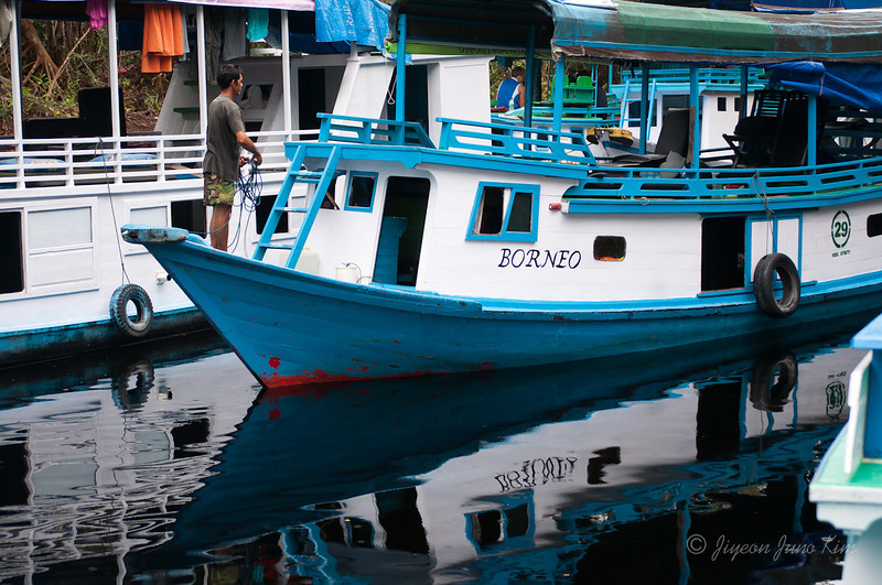 Borneo-jungle-7456.jpg
