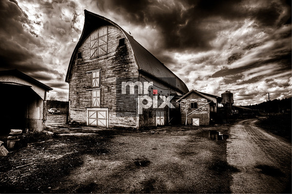 Old Dairy Barns