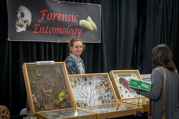 Bug Fair 2018 - Natural History Museum of Los Angeles