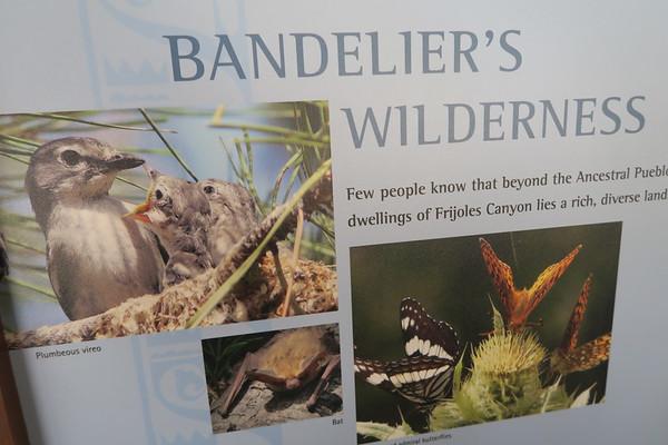 Bandelier National Monument April 2018