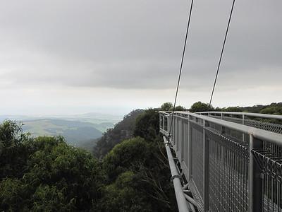 Illawarra Fly Treetop Walk in Robertson, NSW