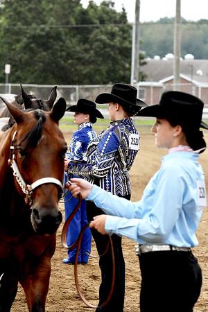 Western Horse Halter 8-9-2021