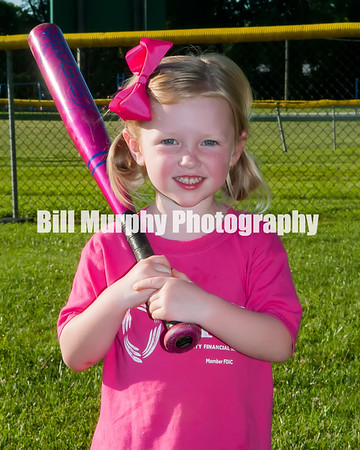 2016 3-4 Girls T-Ball Pink Team