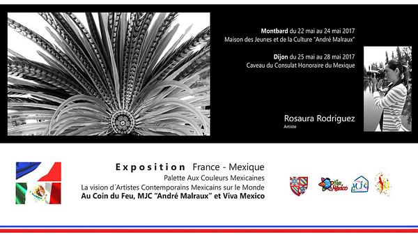 Exhibición en Francia /  Exhibition in France