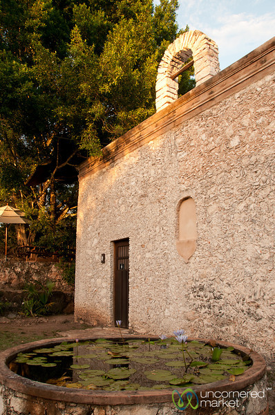 Lilies and Church at the Hacienda - Yucatan, Mexico