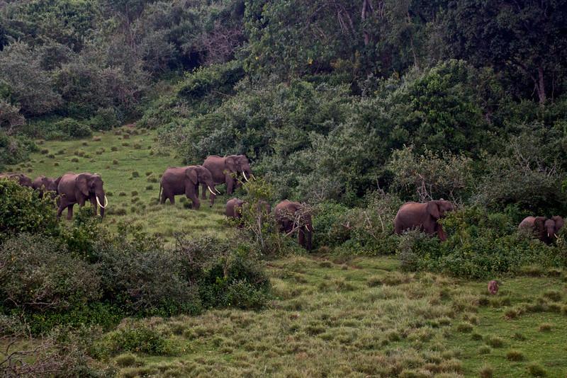 Kenya.Card1.02.2014 103