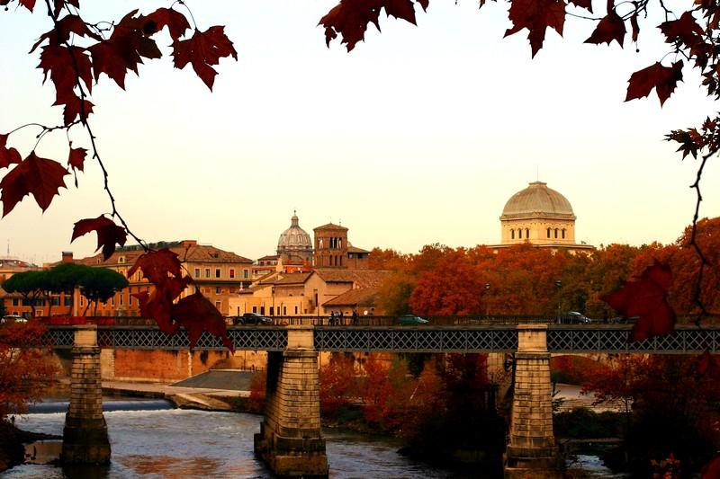 rome-street_2142039212_o.jpg