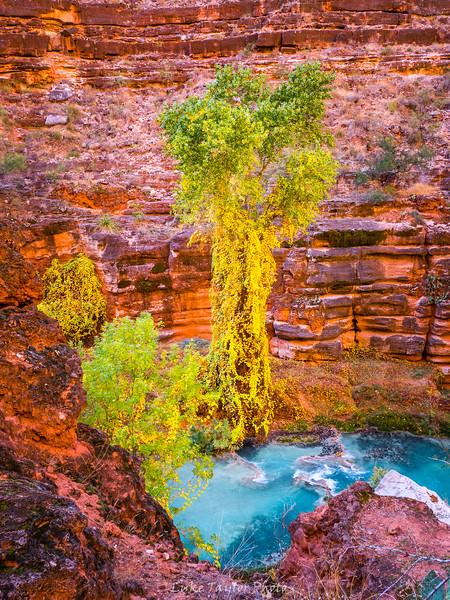 Arizona-157.jpg