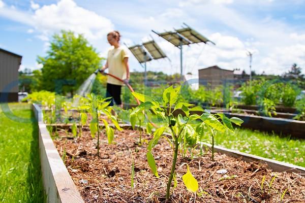 E-Garden Plant Care