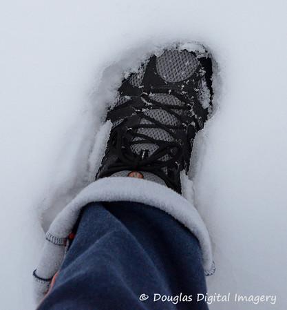 2011 January Snow Storm