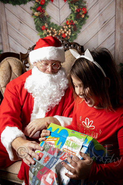Signature 2020 Santa Photos
