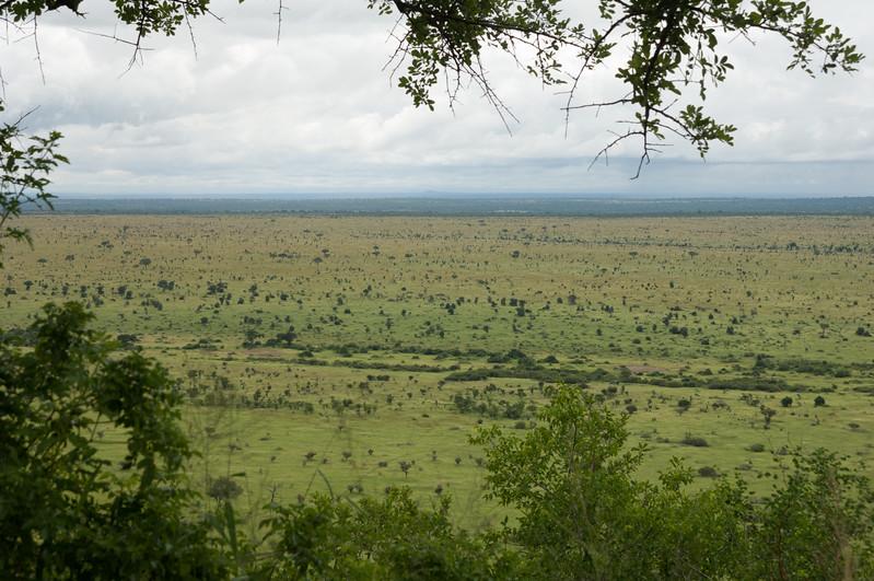 Fra Satara til Lower Sabie, Kruger National Park