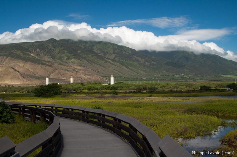 Kealia Pond National Wildlife Refuge, Maui
