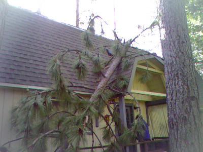 12-6-2011 Arnold Cabin