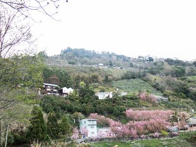 Taiwan in March