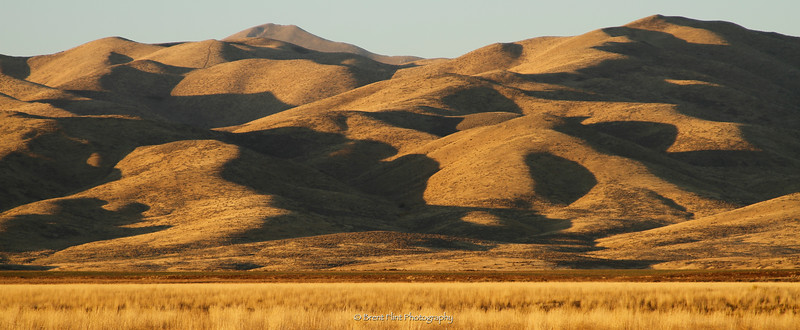 DF.3432 - Camas Prairie with distant hills at sunset, Camas County, ID.