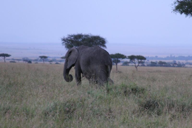 Kenya Part2 '15 241.JPG