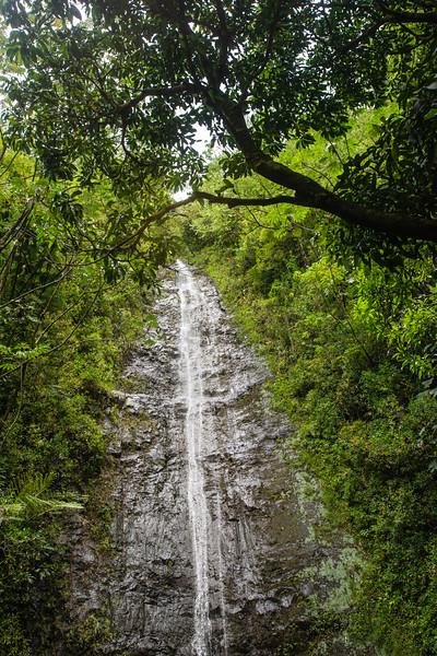 Hawaii2019-845.jpg