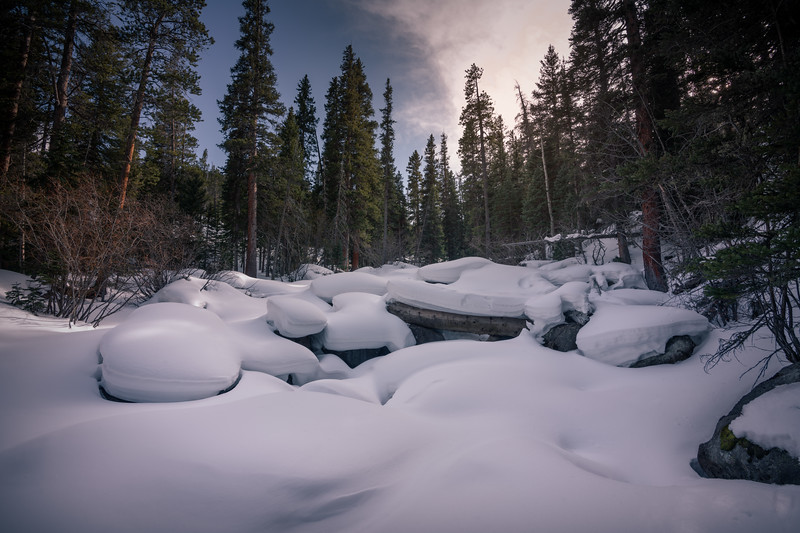 Winter Wonderland || Rocky Mountain National Park