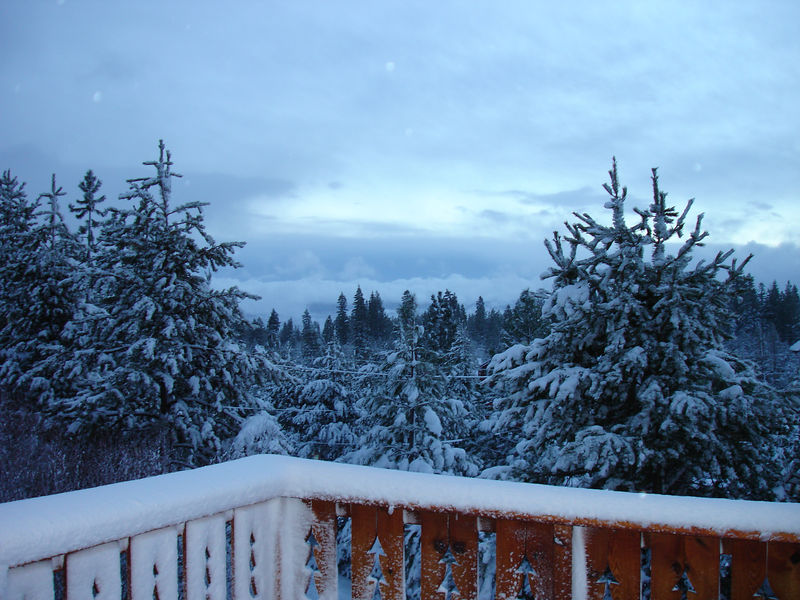 The morning after the storm. It really was a white Christmas after all.