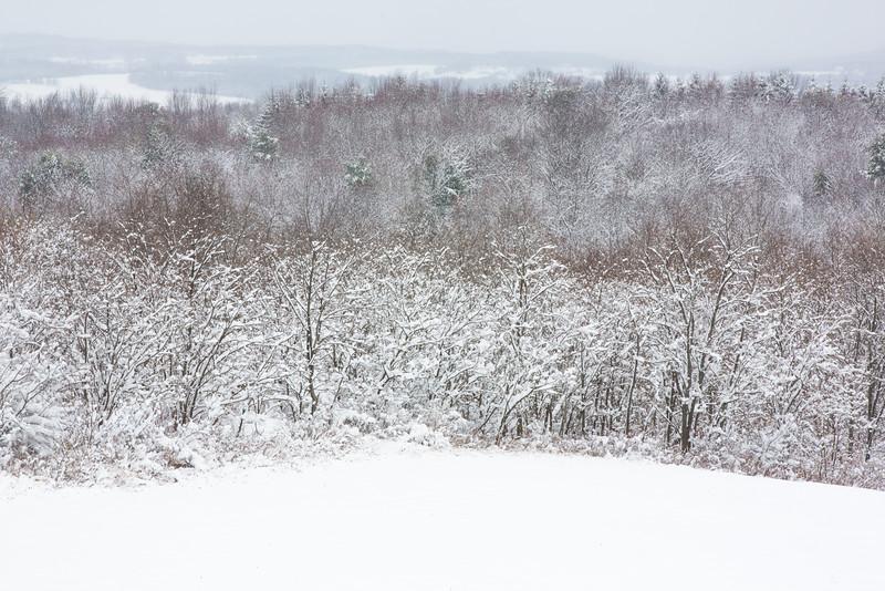 14 11 27 28 Snow on Mercur Hill