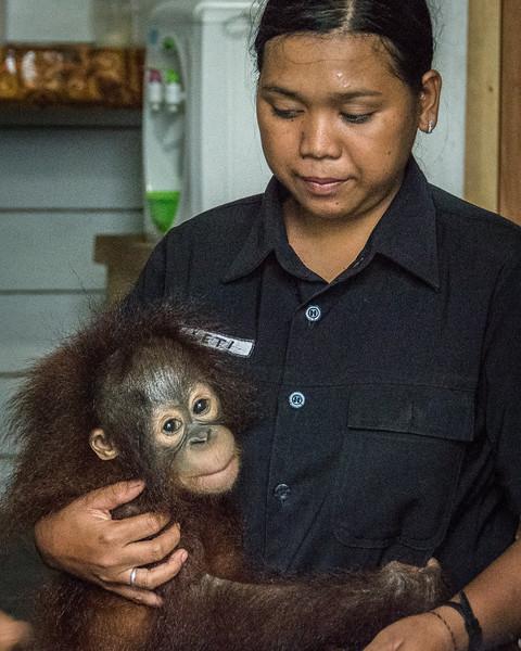 Borneo-2259-2.jpg
