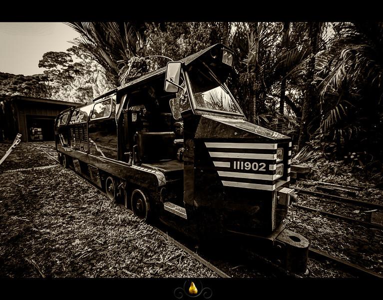 Rainforest Express.jpg
