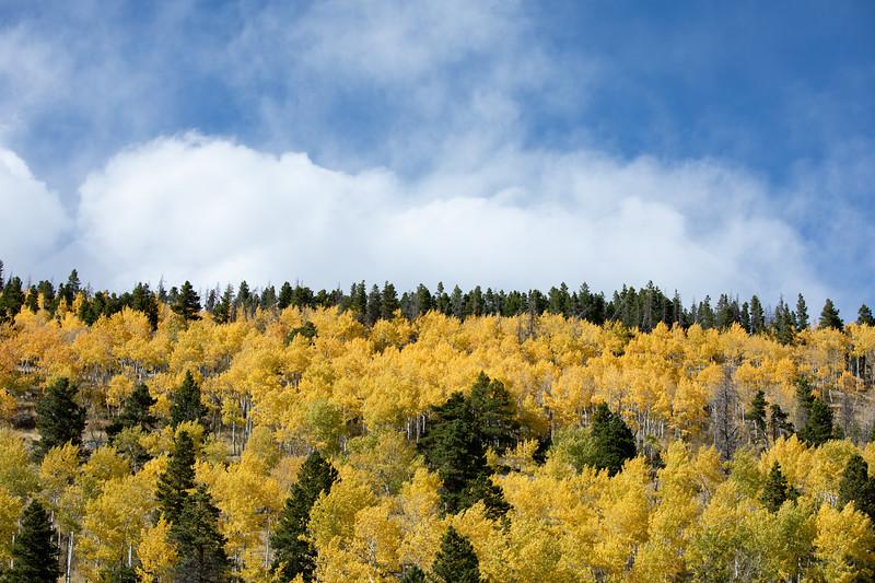 Colorado 2019-1158.jpg