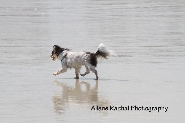 Yolandi at the beach