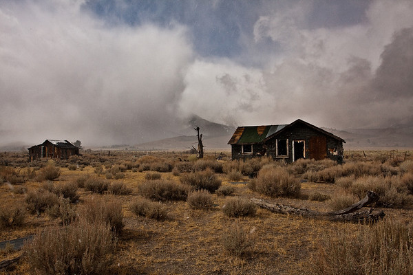 First snow at a abandoned cabin along the 395-Mono Co.