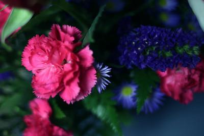 20101117 Virginia's Flowers