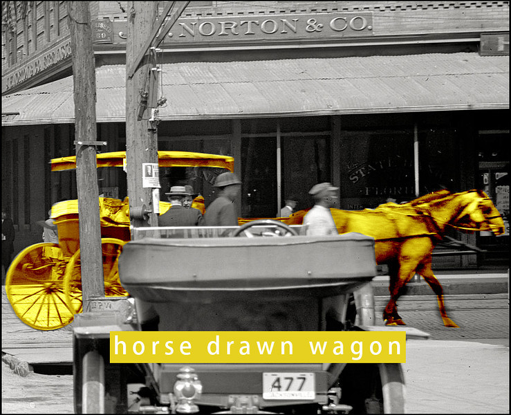 horse drawn wagon.jpg