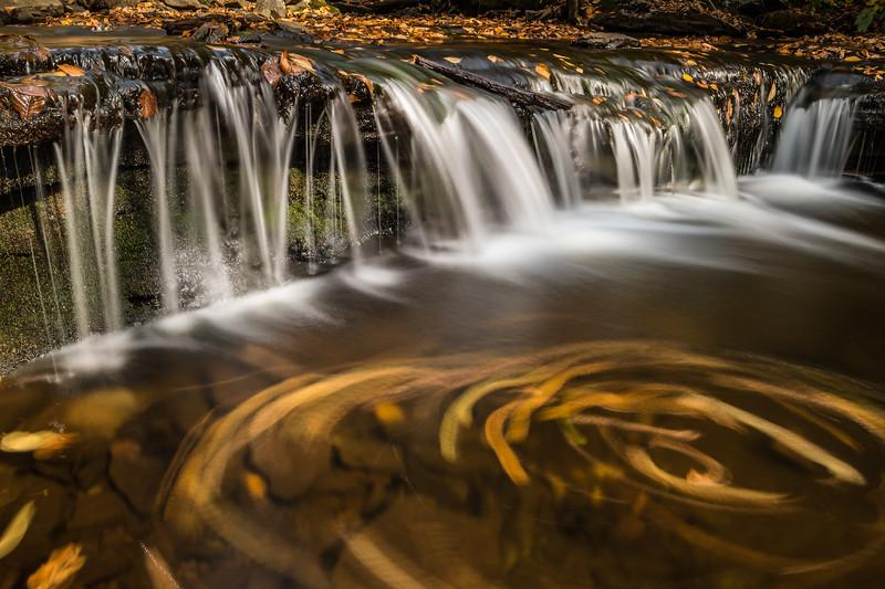 2020 10-18 Ricketts Glen State Park PA Waterfalls-230_Full_Res.jpg