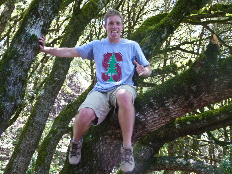 Brit liked to climb stuff, like this tree