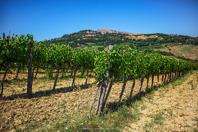 Montepulciano & Val d' Orcia of Tuscany