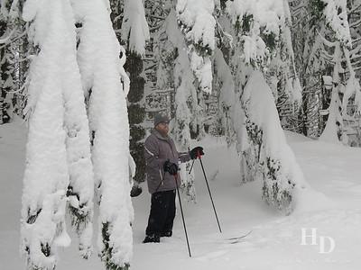 2015-12 Ski
