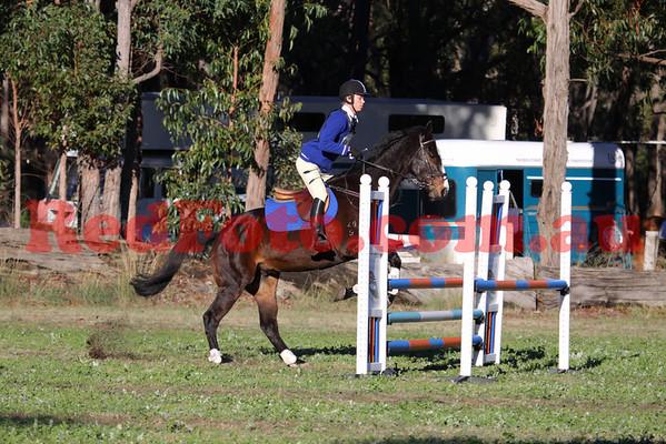 2010 06 20 Log Fence ODE ShowJumping B Grade