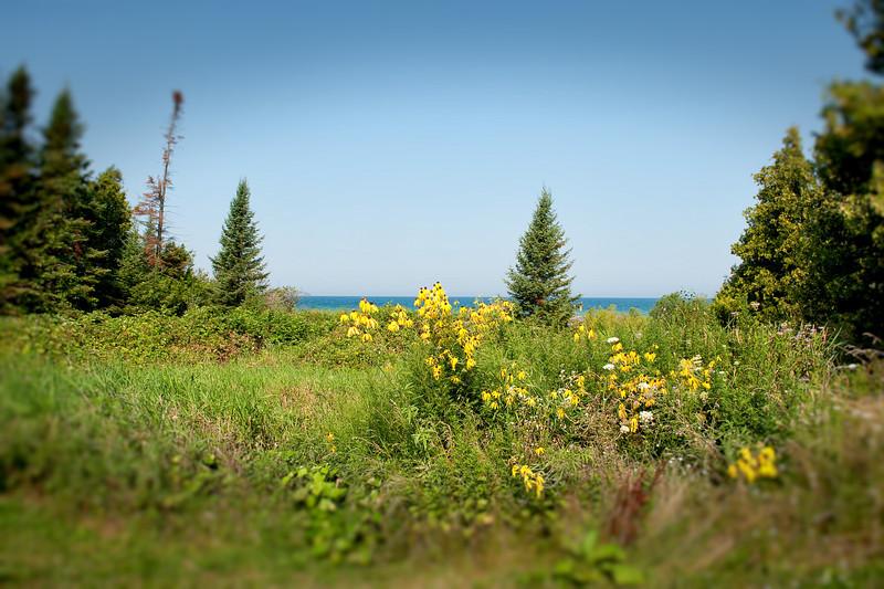 052 Michigan August 2013 - Grand Traverse Lighthouse Shore Bokeh.jpg