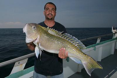 Tile Fish July 2009
