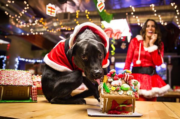SmugMug Christmas party 2012
