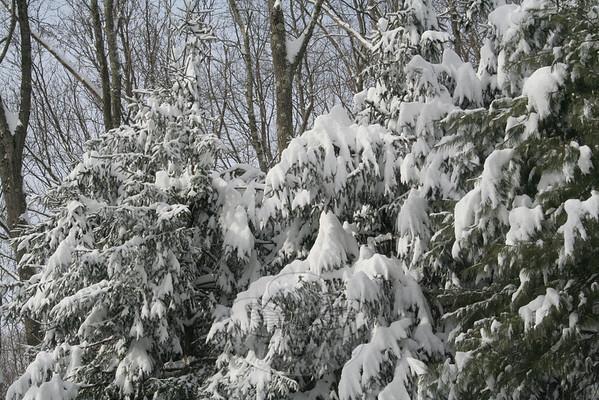 January 12-13, 2010 SNOW