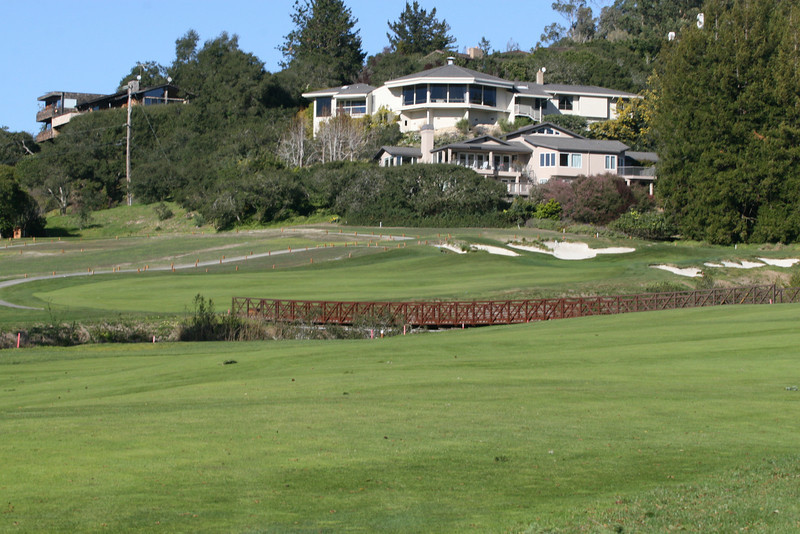 11 green and house.JPG