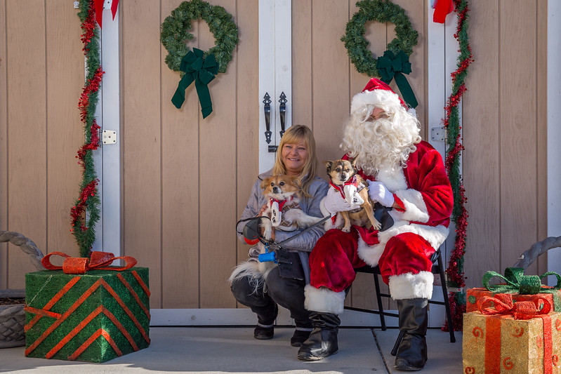 Pet Pictures With Santa-54.jpg